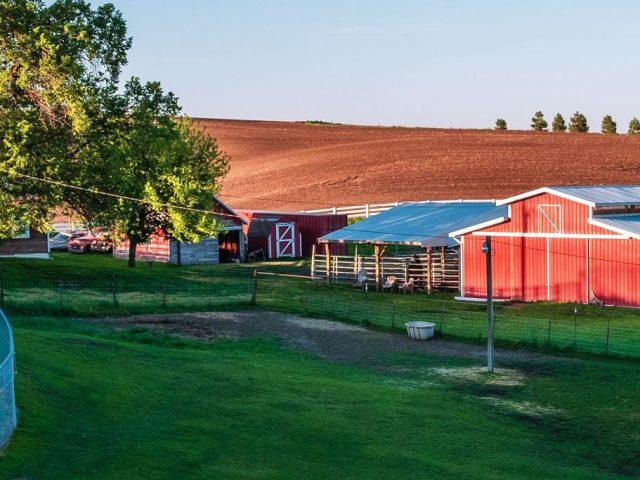 Donald Family Farm